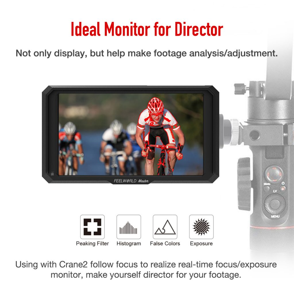 Ideal Monitor for Director